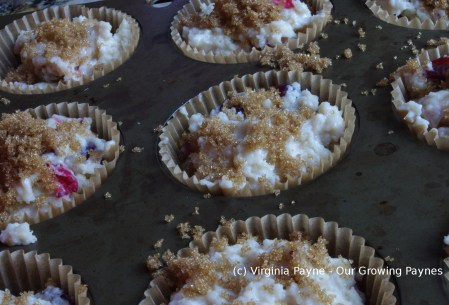 Gooseberry muffins 4 2015