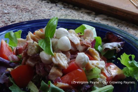 Italian salad 5 2016