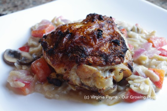 Orzo lemon chicken 6 2016