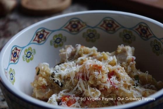 Quinoa aubergine 6 2016