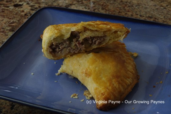 apple-pork-hand-pies-6-2016