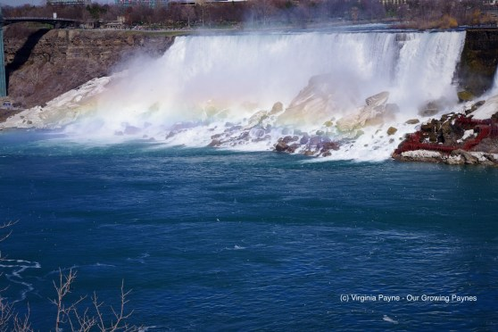 Niagara Falls 6 2018