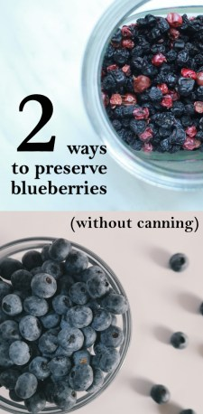 preserving blueberries | ourguidetotheeveryday.com