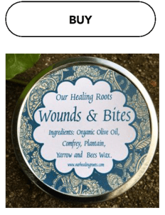 wounds-salve