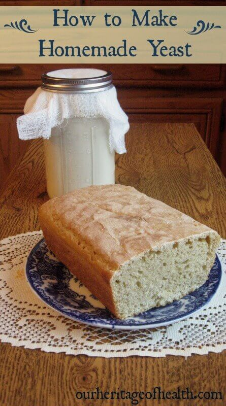 How to Make Homemade Yeast - Our Heritage of Health