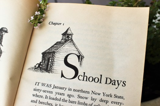 back to school 26