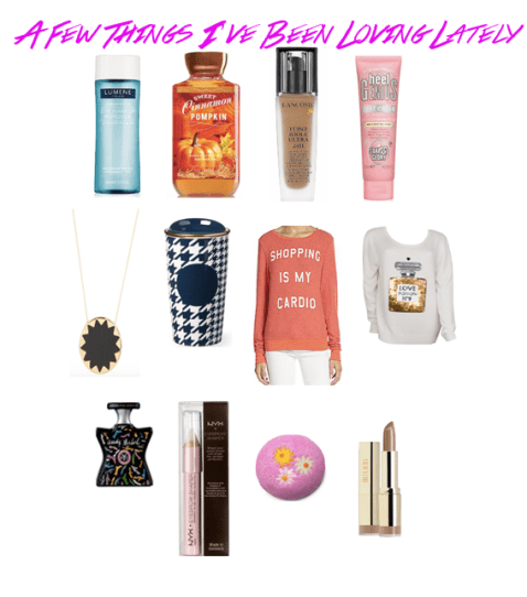 11_Items_I've_Been_Loving_Lately_Lumen_Waterproof_Makeup_Remover_Sweet_Cinnamon_Pumpkin_Lancome_Soap&Glory_SunburstNecklace_Houndstooth_Mug_Wildfox_Bond_No9_LexingtonAvenue_NYX_LUSH_MIlani_Color_Statement_Teddy_Bare