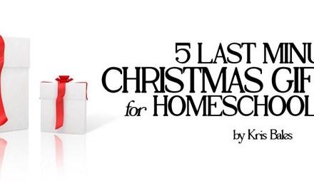 5 Last Minute Christmas Gift Ideas for Homeschool Moms