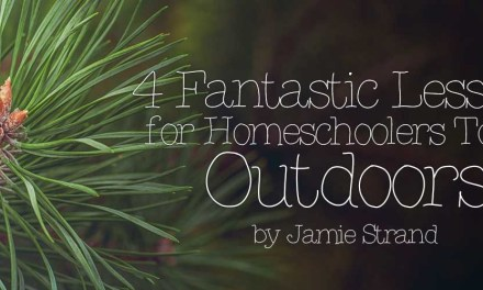 4 Fantastic Lessons for Homeschoolers To Do Outdoors