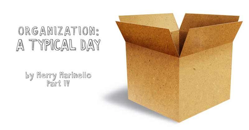 Organization: A Typical Day