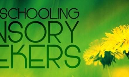Homeschooling Sensory Seekers