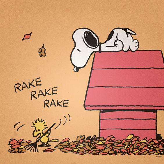 RakeLeaves