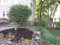 side yard after 9/19/15 weekend