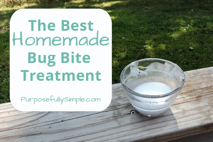 The Best Homemade Bug Bite Treatment