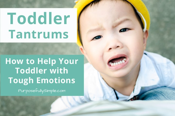 Toddler Tantrums: Helping Your Toddler with Tough Emotions