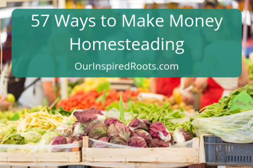 57 Ways to Make Extra Money Homesteading (Anywhere)