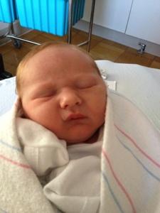 Meet our Little Man (1/3)