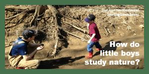 How do little boys study nature?