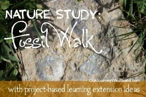 Nature Study: Fossil Walk and Follow Up Fun