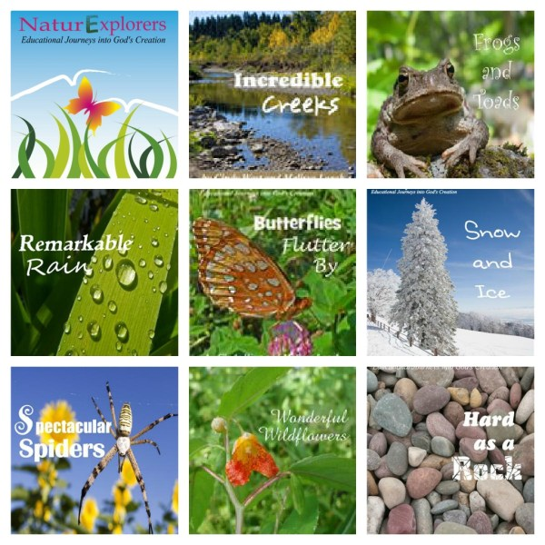 NaturExplorers can be used for nature walk ideas or science unit studies.