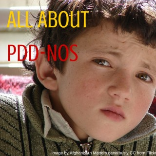 All about PDD-NOS