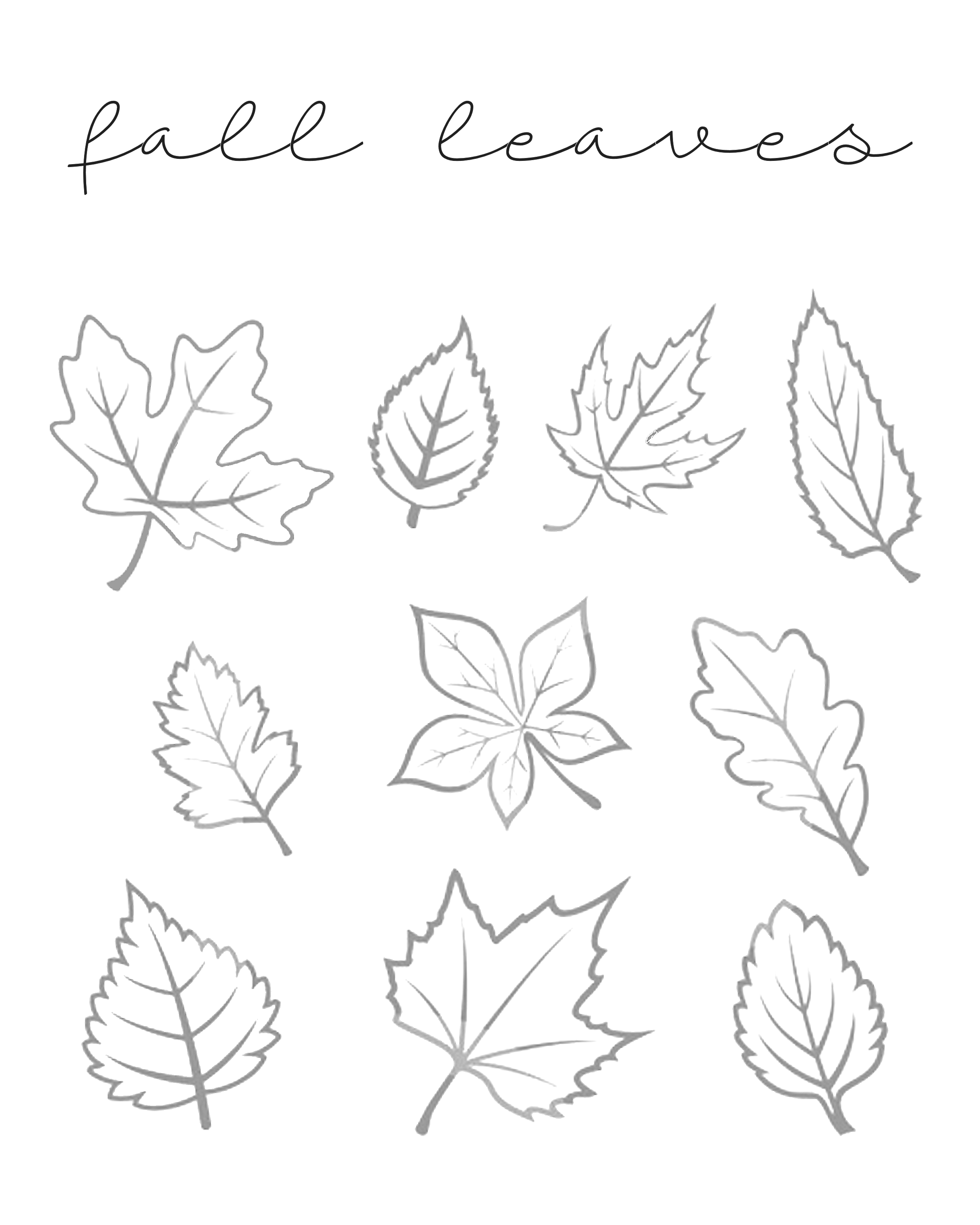 Fall Leaves Printables