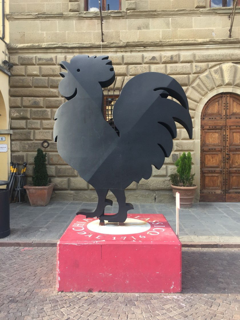 Greve in Chianti - the black bird