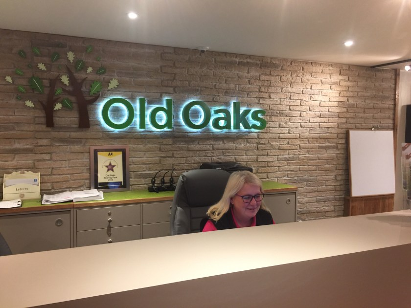 Michele hard at work in the old oaks Glastonbury reception