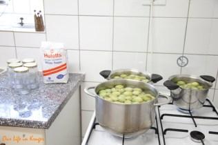 I had to use three pots for my bucketsfull of Marulas