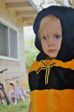 Halloween Bee!