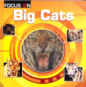 FOCUS ON Book Series - BIG CATS (Kid's Educational Books)