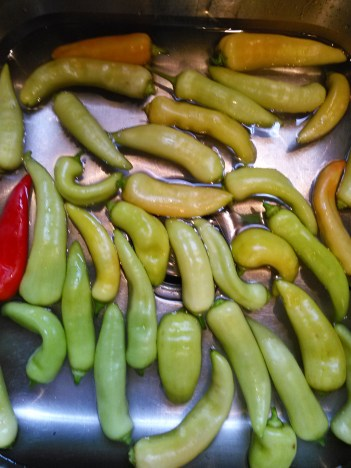 banana peppers in sink