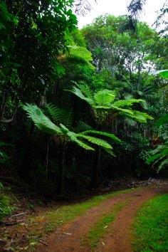Parc provincial créé en novembre 2008