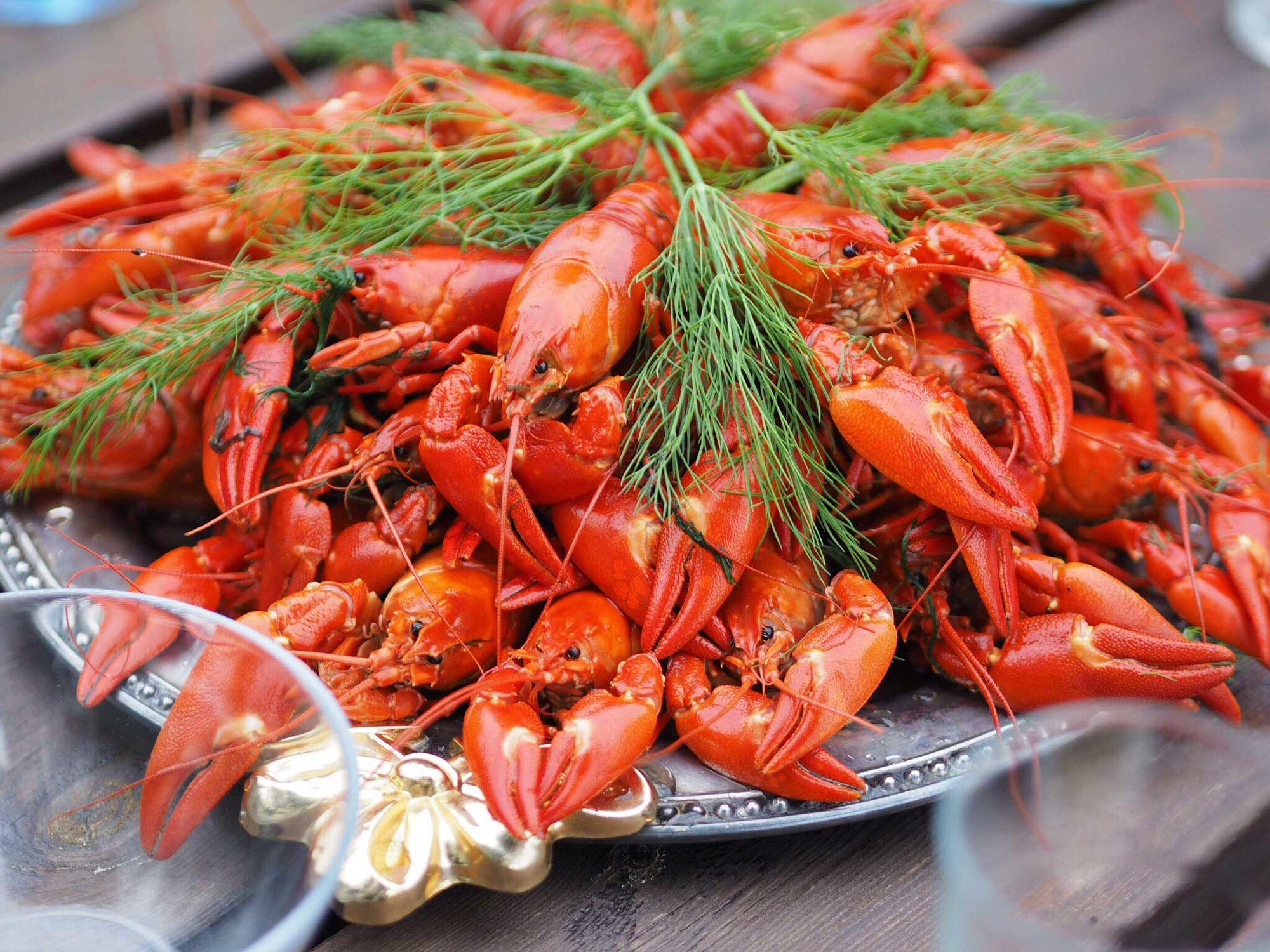 Crabs Characteristics Habitat Alimentation Habits And