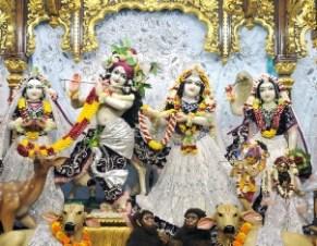 Sri Sri Radha Gopinath (16)