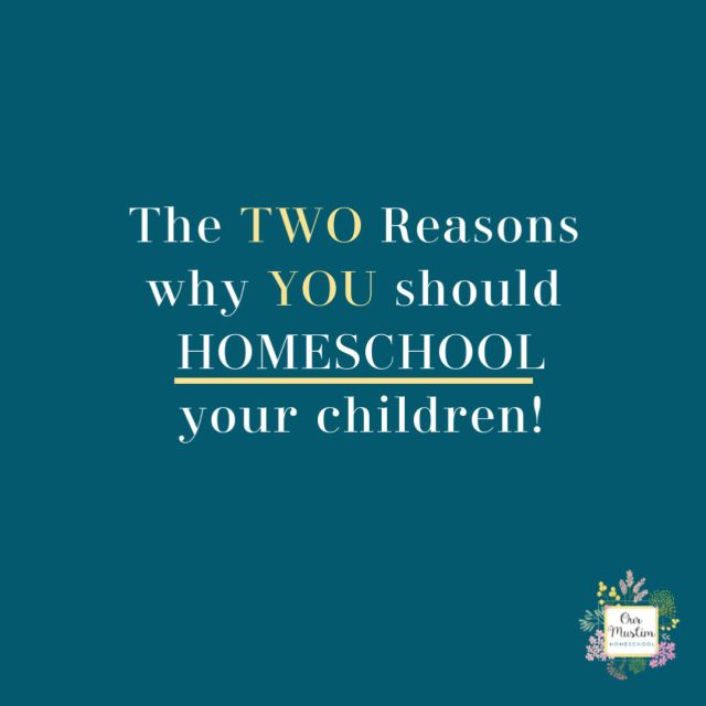 The Two Big Reasons why you should homeschool your children!