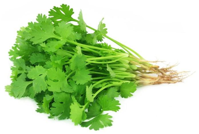 healthy diet - veg