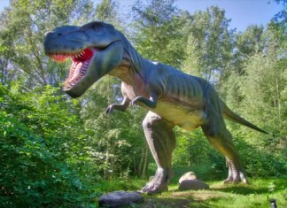 Maharashtra state to soon have its own fossil park in Gadchiroli district