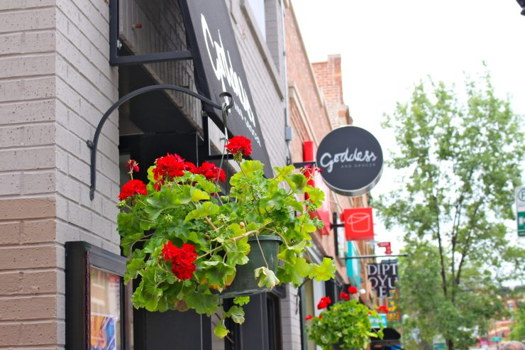 A walking food tour through Chicago's Bucktown and Wicker Park neighborhoods // Family Travel | Where to Eat | Unique Things to Do | Travel with Kids | Cheap Eats | Chicago Itinerary | Foodies
