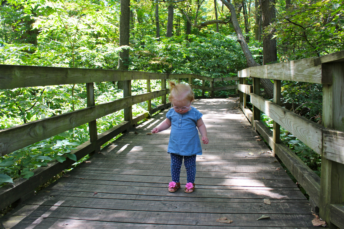 Frolicking in the Fontenelle Forest: a hidden gem in Omaha's own backyard | ournextadventure.co