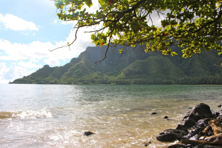 Travel Guide: North Shore, Oahu - where to eat, what to see, and where to stay (with or without kids!) | ournextadventure.co