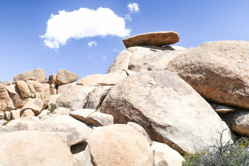 Plan a one day trip in Joshua Tree National Park with this beginner's guide to the best sites and easy hikes, plus tips for planning your day and what to pack. #joshuatree #nps #california #familytravel #findyourpark // Family Travel | Joshua Tree NP | One Day Itinerary | Palm Springs Day Trip | What to See | Easy Hikes | Top Sites | Best Trails | Joshua Tree with Kids | Best Time to Go | Best National Parks | Top Places in California