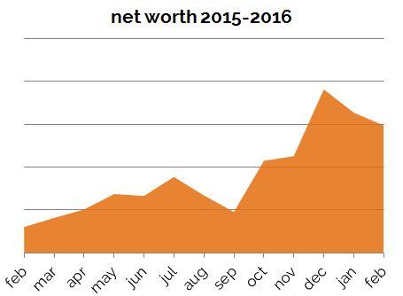 Net Worth Feb 2016 Zoomed In