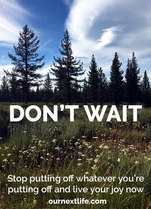 OurNextLife.com // Don't Wait // Stop putting off whatever you're putting off and live your joy now
