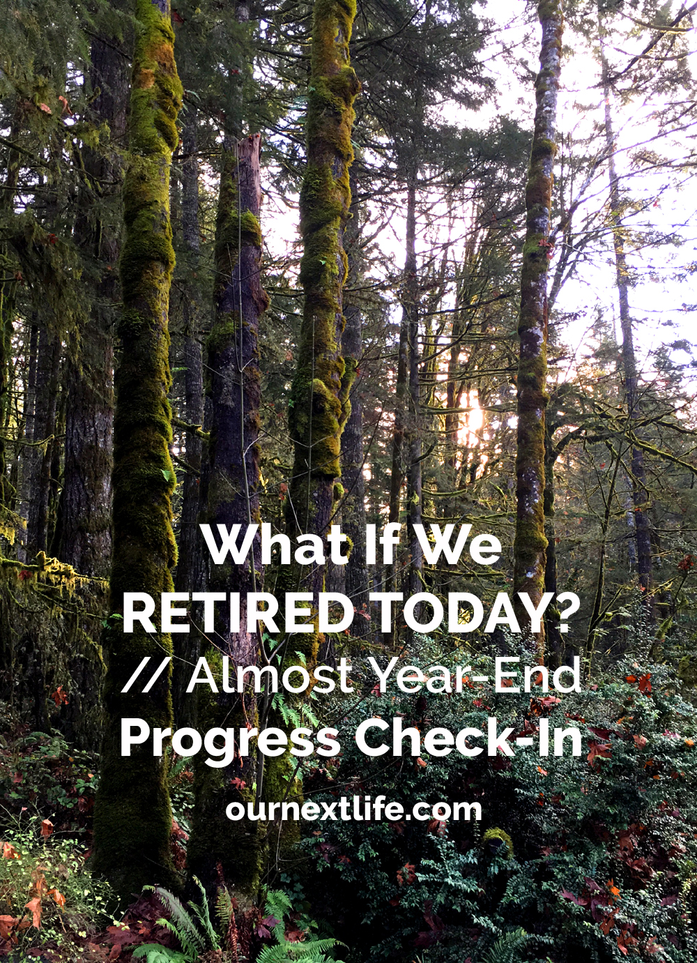 OurNextLife.com // What If We Retired Today? Almost Year-End Progress Check-In