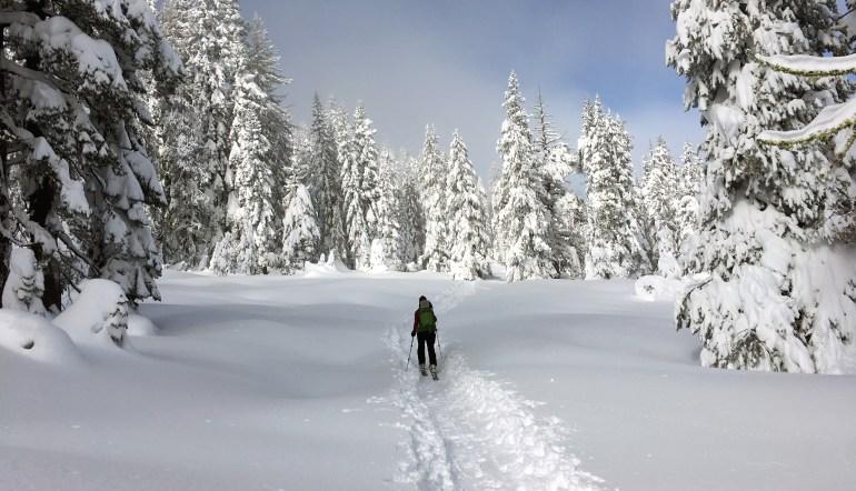 bc-ski-skin-track