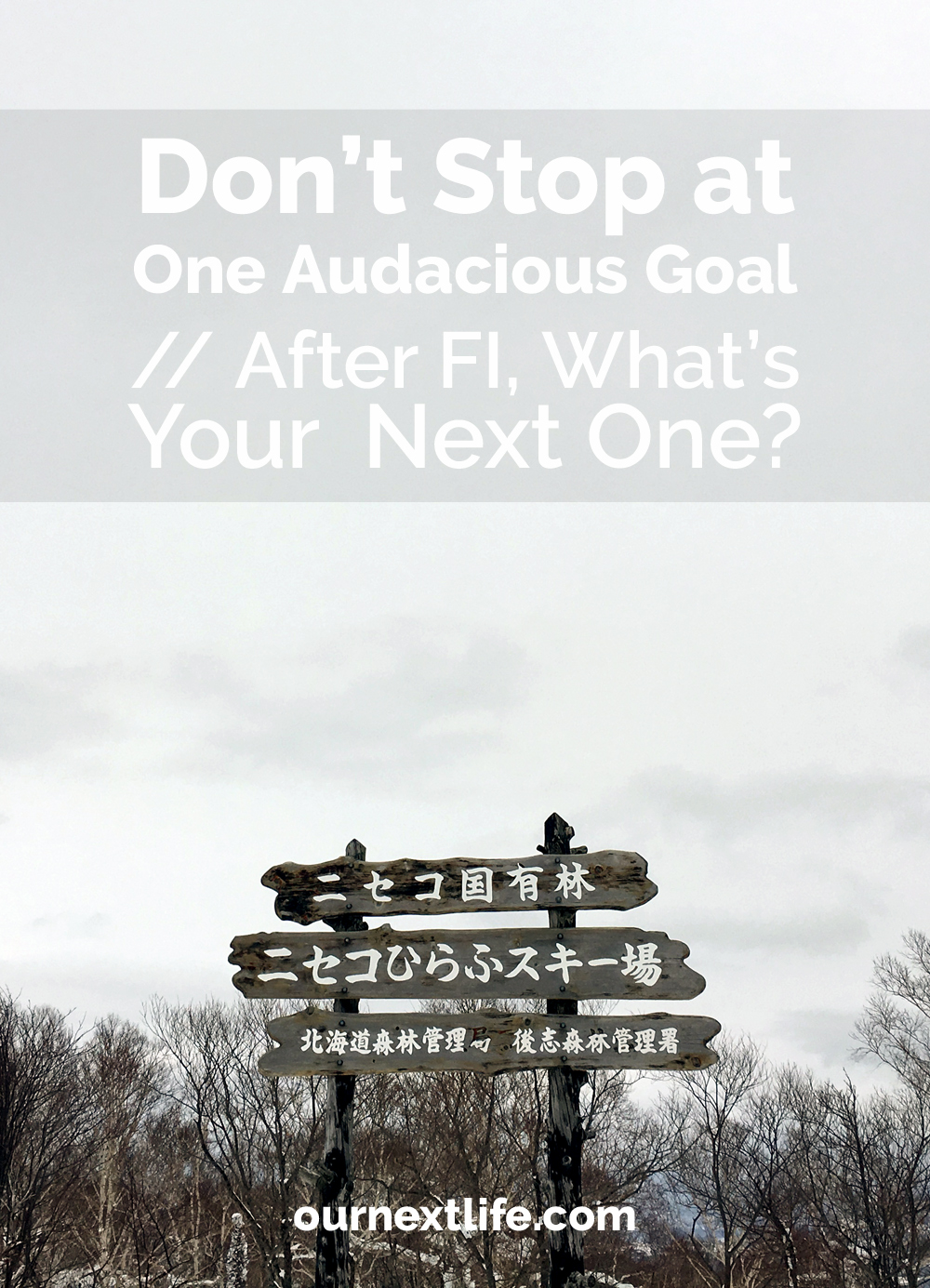 OurNextLife.com // Don't Stop at One Audacious Goal // After FI, What's Your Next One?