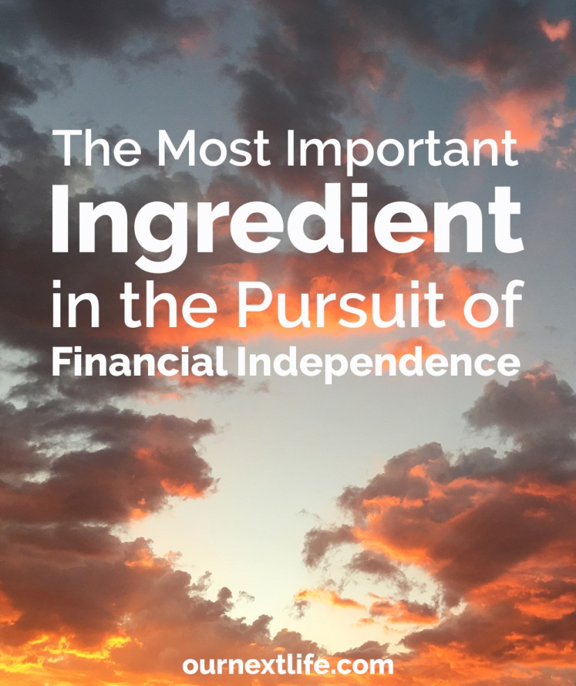 The Most Important Ingredient in the Pursuit of Financial Independence: Excitement! // Excitement mindset, positivity, inspiration -- all critical to pursuing a long-term goal like early retirement
