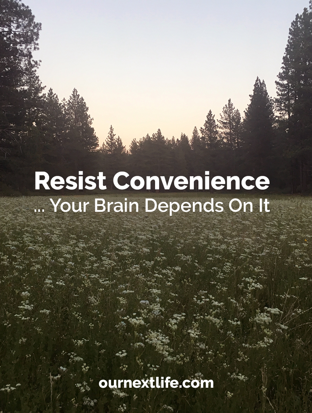 Why you should resist modern conveniences like cooking boxes, personal digital assistants, and other technologies that shrink your brain over time. Focus on challenging yourself and doing as much via DIY as you can, based on your circumstances!