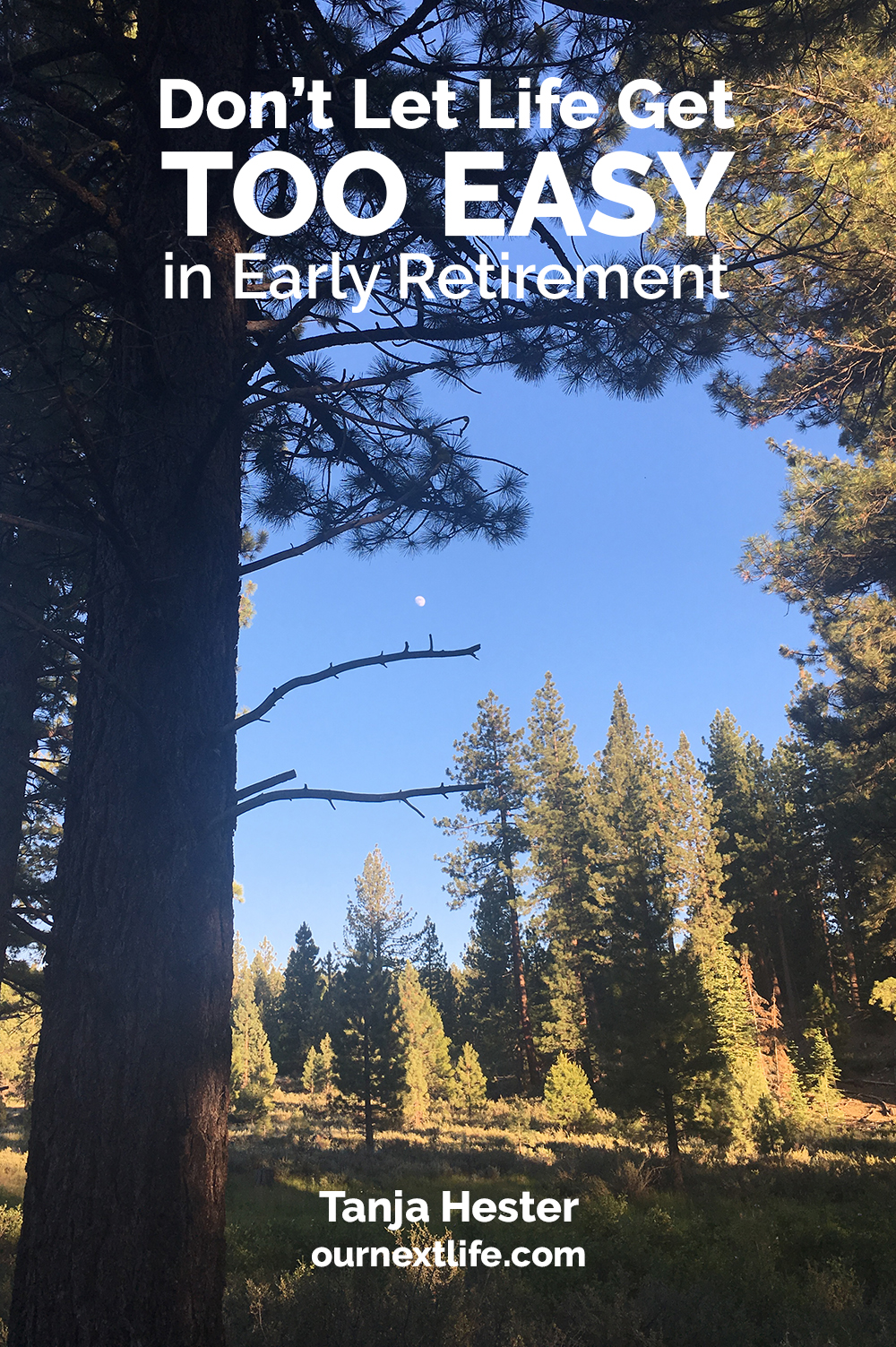 Don't Let Life Get Too Easy in Early Retirement // Work Optional author Tanja Hester